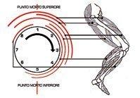 Cyclette orizzontale, vantaggi e svantaggi rispetto alla cyclette verticale